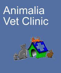 Animalia Vet Clinic