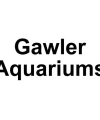 Gawler Aquariums