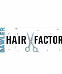 Hair Factor