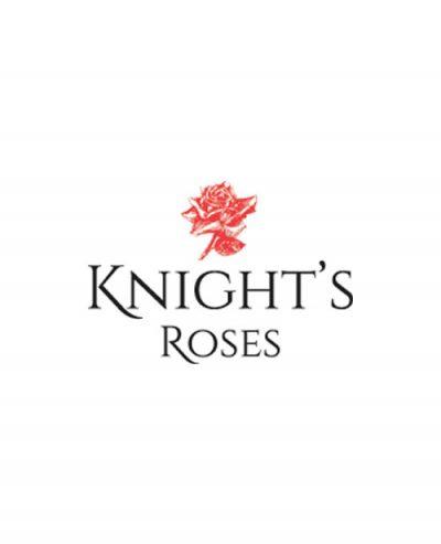 Knight's Roses